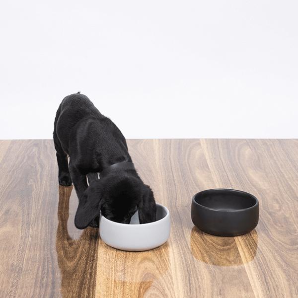 mog-and-bone-ceramic-bowl-grey