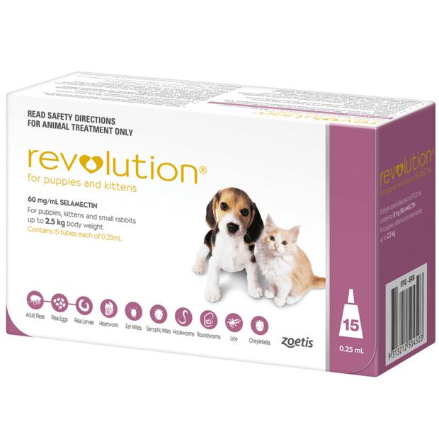 Revolution Puppy Kitten Pink