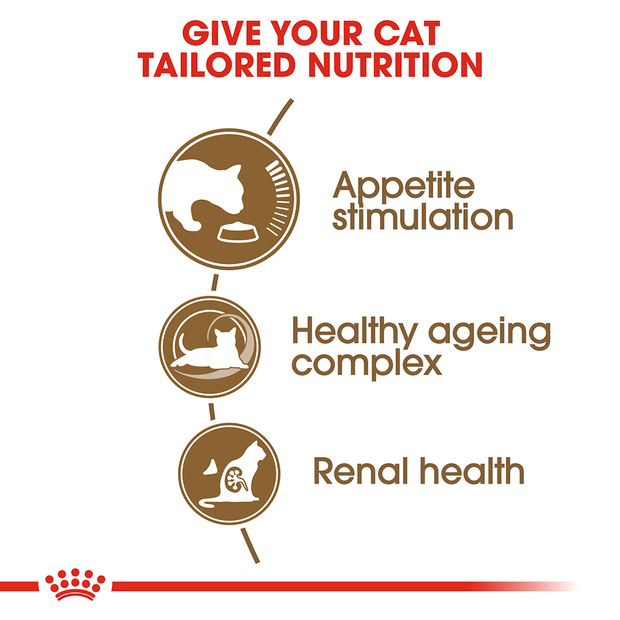 royal-canin-ageing-12-plus-dry-cat-food