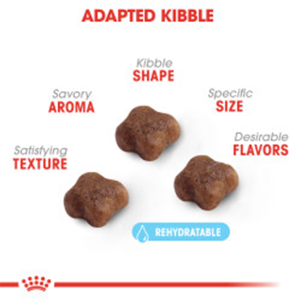 royal-canin-mother-and-baby-dry-cat-food