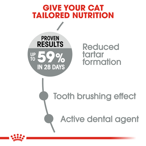 royal-canin-oral-care-adult-dry-cat-food