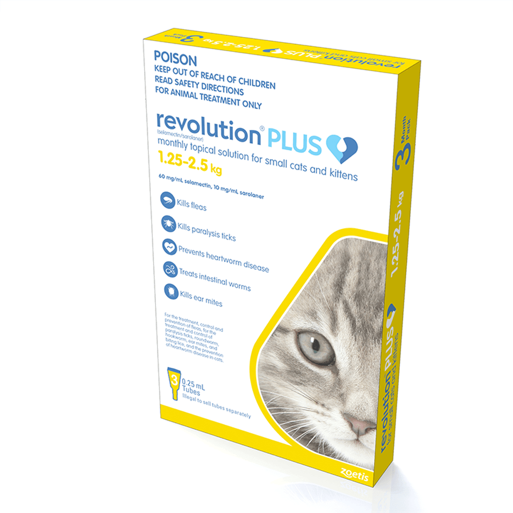 Buy Revolution Plus Yellow Kitten And Small Cat Online Low Prices Free Shipping
